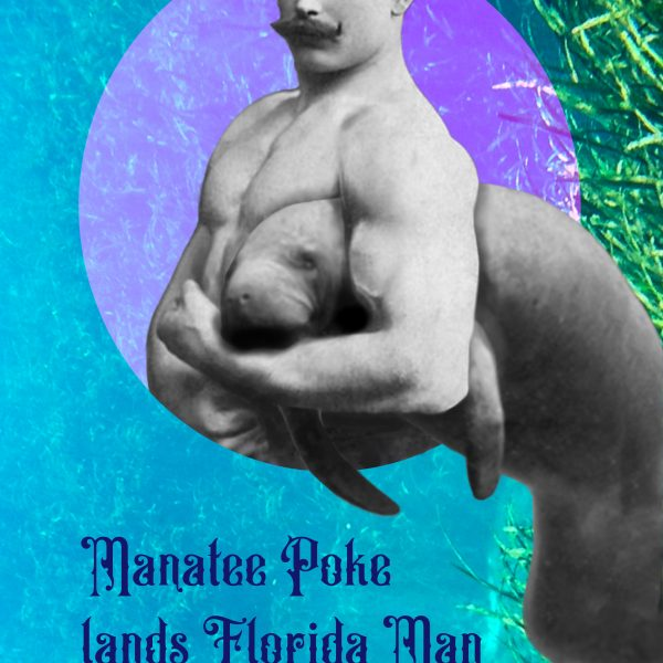 """A mustachoied Florida Man holds a manatee in a headlock, with the headline, """"Manatee poke lands Florida Man in federal court"""""""